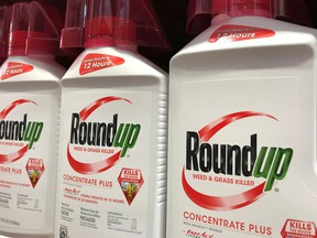 Roundup is shown for sale in this file photo. (REUTERS/Mike Blake)