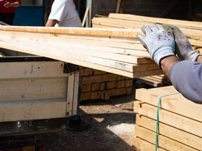 Workers holding material planks.  Not Released MILJAN ZIVKOVIC / GETTY IMAGES/ISTOCKPHOTO