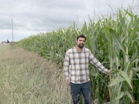 Justin Allaer, grains and field crop manager at Serkka Farms, was tending to their crops outside of Port Lambton on Sept. 2. He said the farm's corn and soybean crops are doing well, even after a hot and dry couple growing months. Jake Romphf