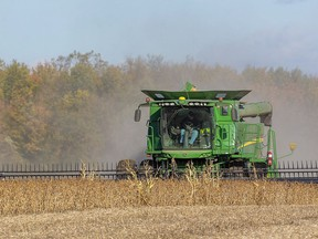 Ron Smith of Killins Custom Work out of Dorchester combines soybeans near Thorndale in this 2019 file photo. (Mike Hensen/Postmedia Network)
