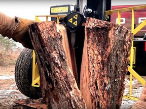 Hydraulic power drives the splitting wedge into the wood, breaking the log in two pieces. Robert Maxwell photo