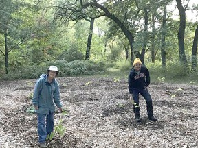 Brenda Lorenz and Mike Kent pose with newly planted pawpaw trees in Canatara Park in Sarnia. The planting project was conducted jointly by the Friends of Canatara and the Sarnia Environmental Advisory Committee, with $800 in funding from Lambton Wildlife. Submitted