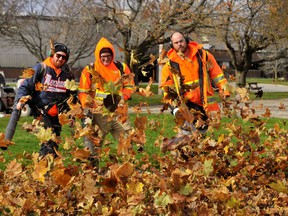 The week of Nov.23-27 is the final week for fall yard waste collection in Norfolk County. (MONTE SONNENBERG/File photo)