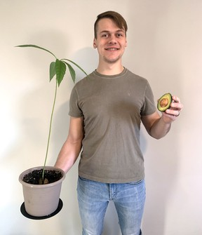 Jacob Heide started growing avocado trees as a hobby during the COVID-19 pandemic, and came up with a fun idea to offer a 'biggest avocado pit' contest in the month of January. (Submitted)
