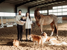 Jake and Courtney Muzzin have fostered roughly 20 dogs over the last 10 years. They live with three rescues -- Lilly, left, Lulu, middle, and Daryl, as well as their daughter Luna, and a 10-year-old warmblood mare named Izzy. (Supplied photo)