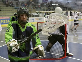 Registration for the Parkland Posse Lacrosse Association's spring box season opened on Feb. 17. Pictured, Parkland Posse Kobe Breast corrals the ball behind the Rocky Mountain Crude net during Rocky Mountain Lacrosse League action at the Grant Fuhr Arena in Spruce Grove on Friday, Jun. 22, 2019. Photo by Josh Aldrich/Reporter/Examiner.
