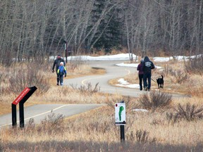 Pathway advocates hope data from a popular outdoor recreation app will help optimize the local pathway system.