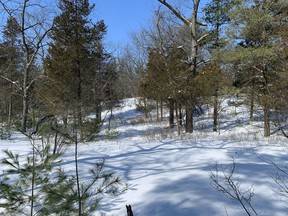 A deep freeze and plenty of snow is a good thing for nature. It helps insulate plants, helps kill unwanted bugs, and causes frost to penetrate deeply, thus improving soil structure. The photo was taken at Pinery Provincial Park several weeks ago. John DeGroot photo