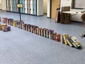 After hearing about Rock Soup Food Bank and Greenhouse, the students of Queen Elizabeth collected cereal boxes to create a domino set up for a lesson in the physics of kinetic energy.