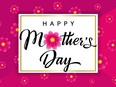 Happy Mothers Day calligraphy banner with flowers on pink background. Vector rose color chamomile blossom decoration for Mother's day special offer poster. Best Mom ever  Not Released (NR)