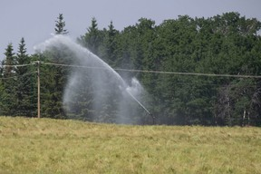 The combination of high temperatures and drought-like conditions are having a negative effect in the M.D.