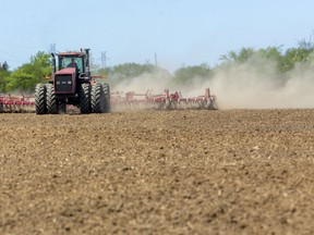 """Shelley Bloetjes, whose family farm is in the Dorchester area, cultivates a 40-hectare field on Scotland Drive before corn is planted. Bloetjes said the soil conditions """"are perfect,"""" with the sunshine and wind drying everything out """"really nicely."""" Mike Hensen/Postmedia Network"""