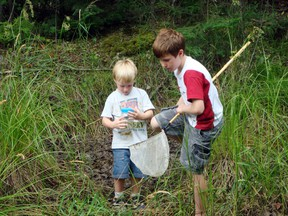 McMurphy's Pond attracted many junior naturalists to investigate its mysteries.