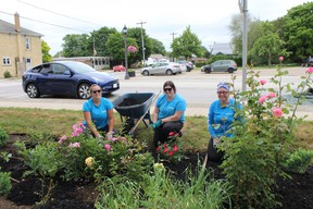 Marian's Rose Garden in Ripley, refreshed and ready for her close-up thanks to Enviro Masters Huron-Bruce.SUBMITTED