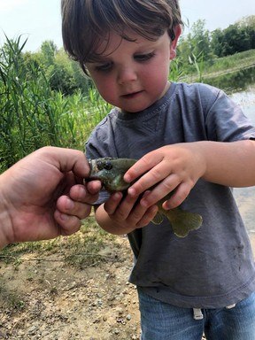 A young angler caught a fish during Petrolia's annual family fishing derby, which took place from July 1-11 at Little Lake in Bridgeview Park. Handout/Sarnia This Week
