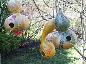 Creating attractive birdhouses from homegrown gourds makes a good project for gardeners who sell veggies, preserves and crafts at roadside stands and at farmers' markets. A good school student project too. (Ted Meseyton photo)