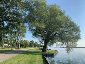 """Brander Park at Port Lambton on Tuesday, Aug. 10, 2021. The St. Clair River has since 1987 been identified as an """"area of concern"""" because of degraded water or environmental health. But in June, one of those concerns – tumours and other deformities in fish – was found to have been resolved. Peter Epp/Postmedia Network"""