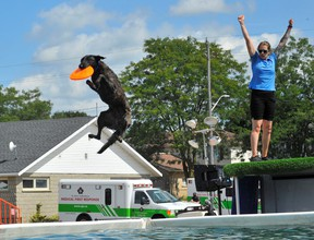 Visitors to this year's Paris Fair were treated to numerous displays of canine derring-do courtesy of the Extreme Dogs exhibition team. Here, handler Michelle Smith puts pooch Lunacy through his Frisbee-chasing routine at the doggie pool. – Monte Sonnenberg