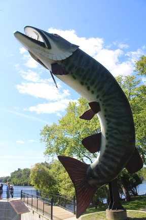 Husky the Muskie and McLeod Park are scheduled to get a facelift following a special Kenora city council meeting on Tuesday, Oct. 12.