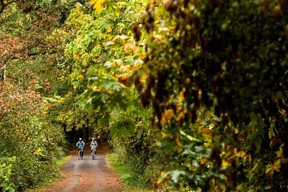 The Galloping Goose Trail on Vancouver Island.