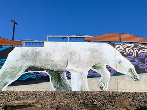 Don't miss the Arctic-themed murals on the wall outside the hospital. Photo by Jennifer Bain