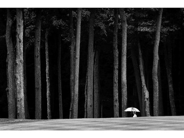 OWINGS MILLS, MD - JULY 27: (EDITORS NOTE: Image has been converted to black and white.) A spectator walks along the 4th fairway during the final round of the International Crown at Cave Valley Golf Club on July 27, 2014 in Owings Mills, Maryland.