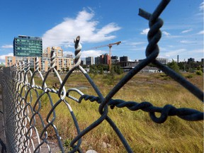 An arena is one of the options for the redevelopment of LeBreton Flats, the NCC says.