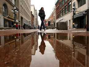 An NCC committee is looking at once again allowing vehicles onto Sparks Street.