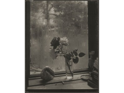 Josef Sudek's Last Rose, 1956part of a new exhibit of his photographic pieces at the National Gallery of Canada until Feb. 26.
