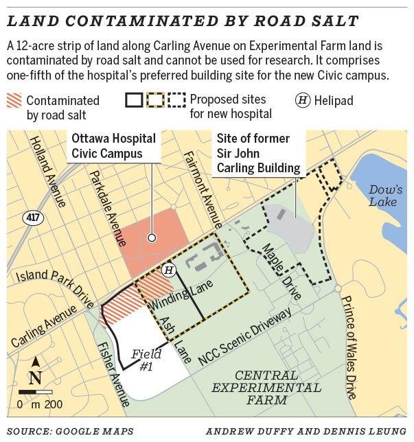 Land contaminated by road salt