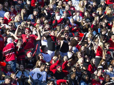 Ravens fans whoop it up in the TD Place stadium stands on Saturday.   Ashley Fraser/Postmedia