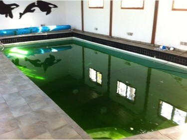 Prior to renovation, the addition to a home in Ottawa's Qualicum-Redwood neighborhood had a large indoor swimming pool, which had seen better days.