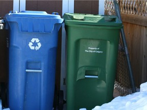 Recycling and green bin file photo