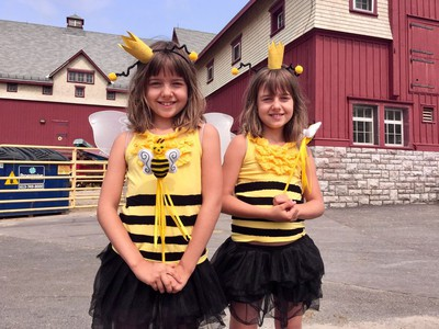 Twin bees Emily and Sophie Otreba, 7, at World Bee Day celebrations at the Museum of Agriculture Saturday, Aug. 18.
