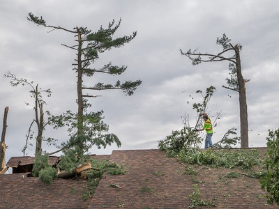 A roofer removes branches from a home on Riverbrook Rd on Sunday morning as residents in Ottawa's Arlington Woods neighbourhood deal with the aftermath of the twister.