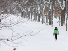 A person walks in a snow covered park.