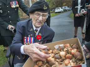 """Don White, 95, takes a look at the gift box of tulips presented to the NCC. The royal gift of """"Liberation75"""" tulips was given during a ceremonial tulip planting on Wednesday at Commissioners Park."""