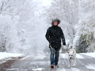 It wasn't quite the snowstorm forecasters predicted, but a few centimetres of the white stuff had dusted the Ottawa region by Thursday morning, leaving a picturesque view for dog walker Jackie Steenbakkers and her pooch Stanley in Manotick. Four or five more centimetres were due to fall throughout the morning.