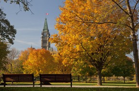 The stunning colours of Fall Rhapsody can be enjoyed right in the heart of the nation's capital from places like Major's Hill Park.