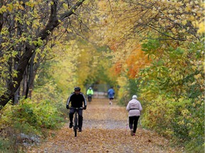 Pedestrians and cyclists were enjoying the fall colours on a path along side the Ottawa River in Ottawa on Friday .