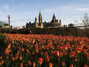 Parliament Hill is seen as people sit on a bench in Major's Hill Park in Ottawa on the Victoria Day long weekend last year.