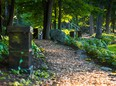 Beechwood Cemetery has many beautiful pathways where visitors can stroll among the headstones and explore the history of Ottawa and Canada.