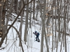 A young boy snow shoes in Gatineau Park Tuesday Jan 28, 2020. The boy was trying to catch up to his father in the woods.   Tony Caldwell
