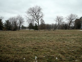 FILE: An area of land in Mechanicsville north of Burnside Avenue is slated for development by the NCC for five new embassies.   Julie Oliver/POSTMEDIA