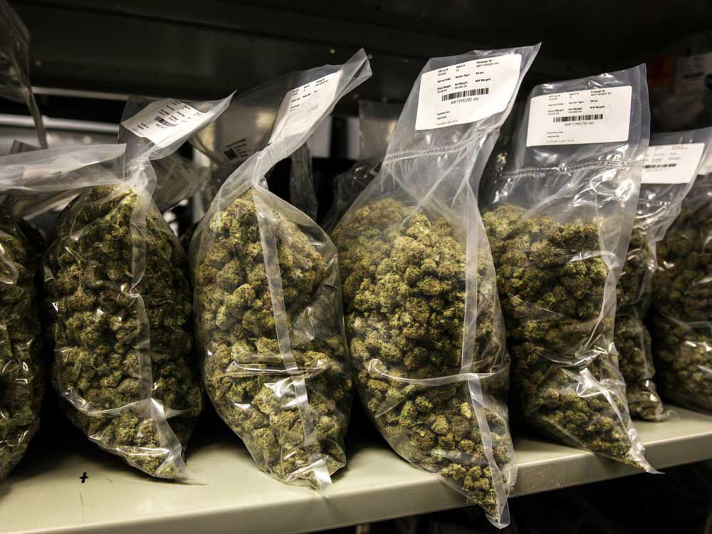 Earlier this year, cannabis prices began to decline as a result of oversupply.