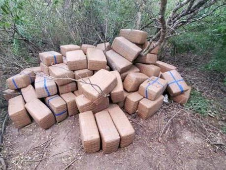 Border patrol finds cannabis bundles worth nearly a million abandoned in the middle of nowhere