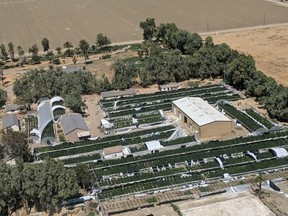 The operation was spread across 18 greenhouses and 40 acres.