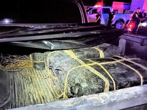 In all, five bundles of cannabis weighing about 189 kilograms were found in the truck bed and cab. /