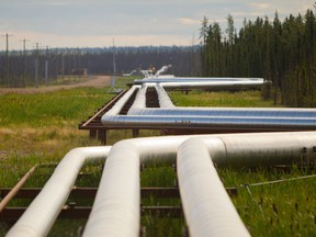 Pipelines carrying steam, gas and an emulsion of bitumen and water snake through the boreal forrest from well pads to the processing facility at the Cenovus Energy steam assisted gravity drainage oilsands facility near Conklin, Alta.