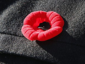 A poppy worn to honour Remembrance Day.